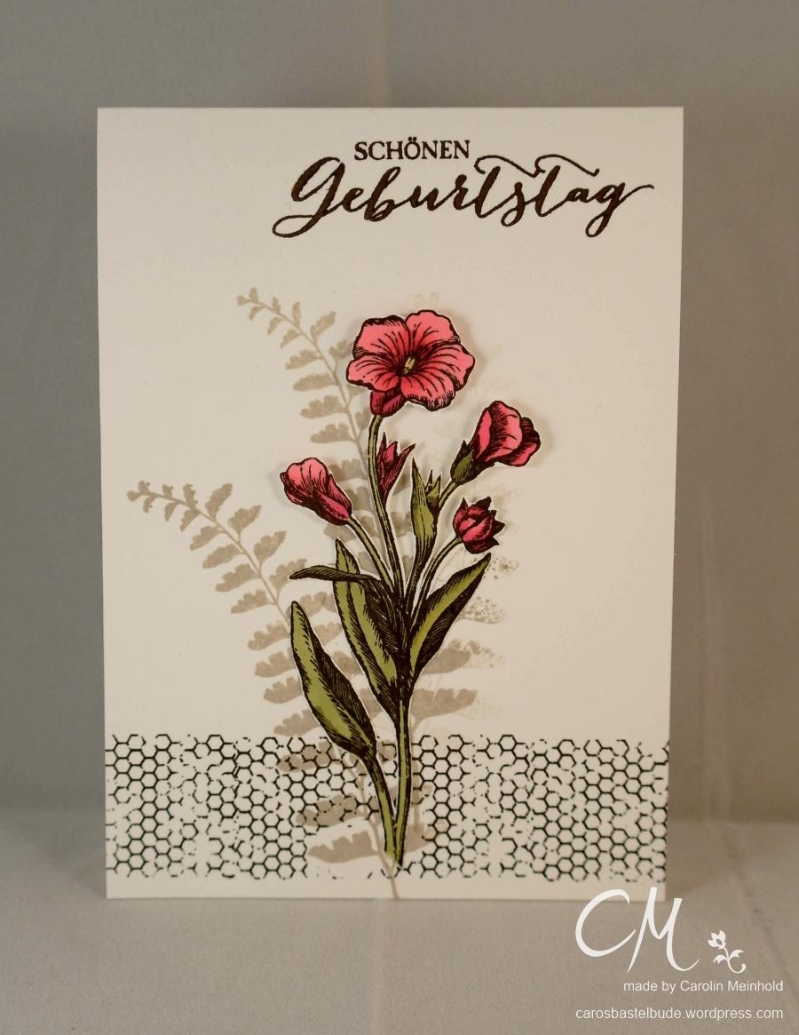 Caros Bastelbude: Karte zum Geburtstag mit dem Set Schmetterlingsgruß von Stampin' Up!